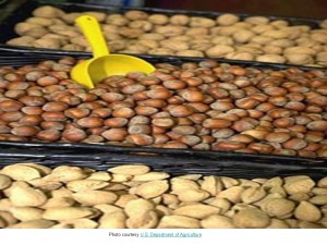 Walnuts, Peanuts, Almonds - From Dept Of Ag -- 7.17.13